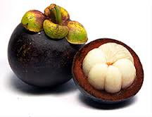 Exactly What is Garcinia CambogiaFruit?