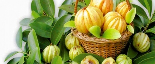 Pure Garcinia Cambogia Extract - Does it really work?